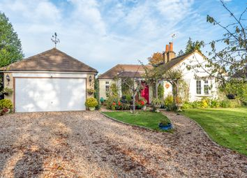 Thumbnail 3 bed detached bungalow for sale in Bat & Ball Lane, Wrecclesham, Farnham