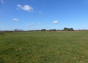 Thumbnail Farm for sale in Outney Common, Bungay