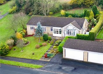 Thumbnail 5 bed detached house for sale in Bishopton Way, Hexham, Northumberland.
