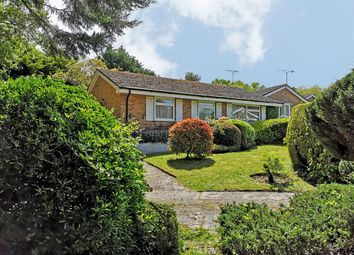 Thumbnail 3 bed bungalow for sale in Pitsham Wood, Midhurst