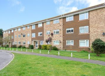 2 bed flat to rent in Harsfold Close, Rustington, West Sussex BN16