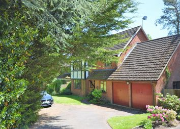 Thumbnail 4 bedroom detached house for sale in Beam Hollow, Farnham, Surrey