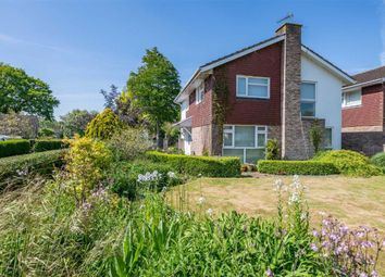 Thumbnail 4 bedroom detached house for sale in The Hawthorns, Raglan, Monmouthshire