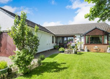 Thumbnail 4 bed bungalow for sale in Aldby Grove, Cleator Moor