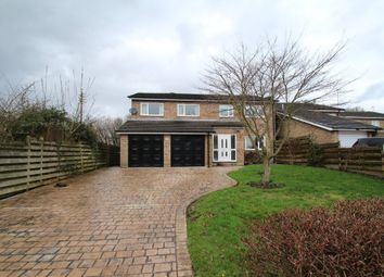 Thumbnail 5 bedroom detached house for sale in Rosamond Avenue, Bradway, Sheffield
