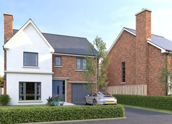 Thumbnail 4 bed detached house for sale in Hanover Hill Gardens, Hanover Hill, Bangor