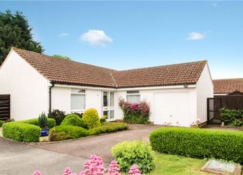 Thumbnail 3 bed detached bungalow for sale in Dukes Way, Axminster, Devon