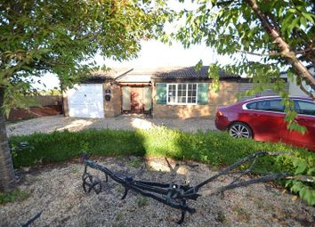Thumbnail 4 bed detached bungalow for sale in Hare Street, Buntingford
