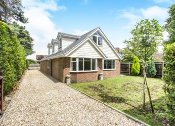 Thumbnail 5 bedroom detached bungalow for sale in Springdale Road, Corfe Mullen, Wimborne