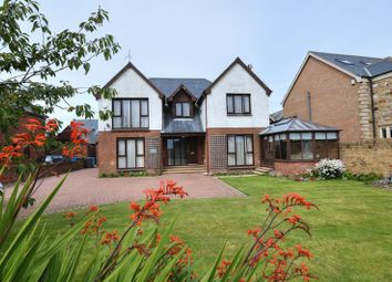 Thumbnail 4 bedroom detached house for sale in South Lane, North Sunderland, Seahouses