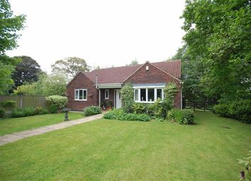 Thumbnail 3 bed detached bungalow for sale in Kirkby Lane, Pinxton, Nottingham