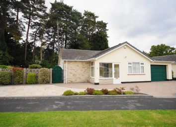 Thumbnail 3 bed bungalow for sale in Sarum Avenue, West Moors, Ferndown, Dorset