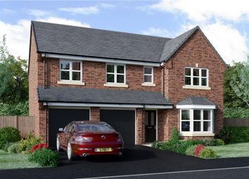 "Thumbnail 5 bedroom detached house for sale in ""Buttermere"" at Milby, Boroughbridge, York"