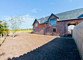 Thumbnail 4 bedroom semi-detached house for sale in Colliston, Arbroath, Angus