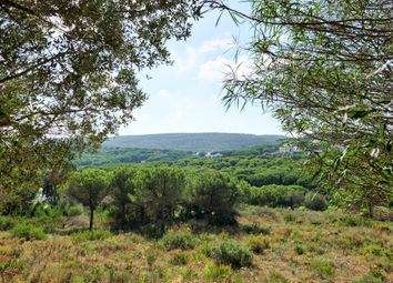Thumbnail Land for sale in 11360 San Roque, Cádiz, Spain