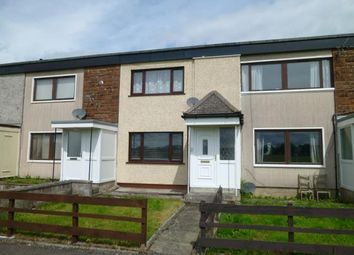 Thumbnail 2 bed terraced house to rent in 19 Latimer Court, Dumfries