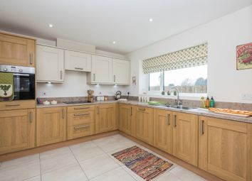 Thumbnail 4 bedroom detached house for sale in Walnut Tree Fields, Mattishall, Dereham