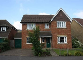 Thumbnail 4 bed property to rent in Magnolia Drive, Chartham, Canterbury