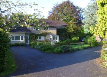 Thumbnail 3 bed property to rent in Warren Close, Cross In Hand, Heathfield