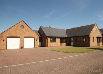 Thumbnail 4 bed detached bungalow for sale in Brydges Gate, Llandrinio, Llanymynech
