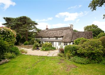 Thumbnail 4 bed detached house for sale in Bashley Common Road, Bashley, Hampshire