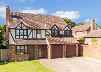 Thumbnail 5 bed detached house for sale in Squirrel Chase, Hemel Hempstead
