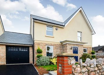 Thumbnail 4 bed detached house for sale in Hockmore Drive, Newton Abbot