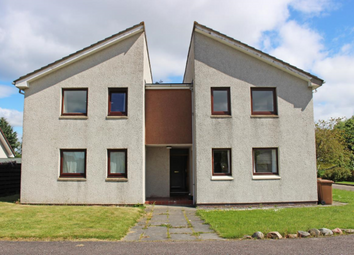Thumbnail Studio to rent in Hazel Avenue, Culloden, Inverness, 7Ws