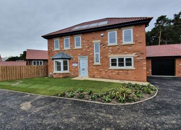 Thumbnail 4 bed detached house for sale in Lanchester Rise, Maiden Law, Lanchester, Durham