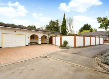 Thumbnail 4 bed detached bungalow for sale in Woodland Avenue, Windsor, Berkshire