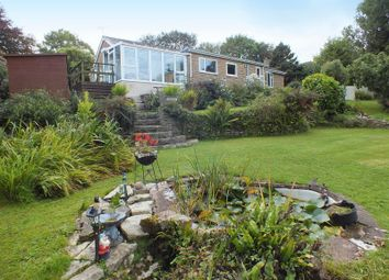 Thumbnail 3 bed detached bungalow for sale in Axminster Road, Charmouth, Bridport