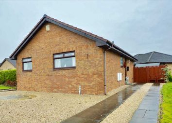 Thumbnail 2 bed bungalow for sale in Cochrane Street, Bellshill