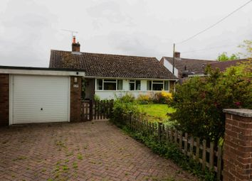 Thumbnail 3 bed detached bungalow to rent in Olivers Battery Road South, Winchester