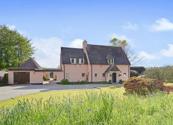 Thumbnail 3 bed detached house for sale in Grenofen, Devon