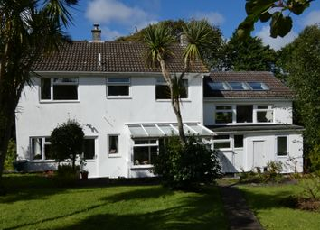 Thumbnail 4 bed detached house for sale in Trew, Breage, Helston