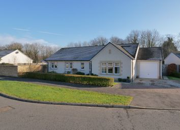 Thumbnail 4 bed bungalow for sale in Abbey Lane, Errol, Perthshire