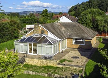 Thumbnail 3 bedroom detached bungalow for sale in Gordon Road, Swanwick, Alfreton