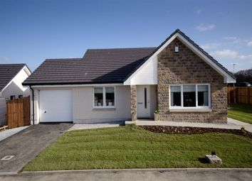 Thumbnail 3 bed bungalow for sale in Sellar Crescent, Keith