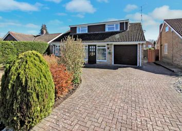 Thumbnail 4 bed detached house for sale in Rosemary Gardens, Blackwater