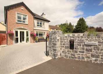 Thumbnail 4 bed detached house for sale in 1 The Schoolyard, Castlecomer Road, Kilkenny, Kilkenny