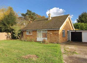 Thumbnail 2 bed detached bungalow for sale in The Link, Bentley, Ipswich