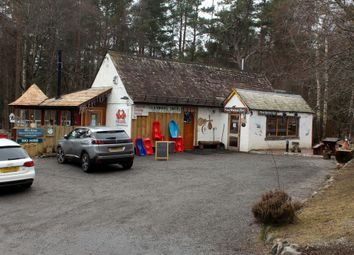Thumbnail Leisure/hospitality for sale in Pine Marten Bar, Shop, Café, Ski/Bike Hire And Accommodaion, Nr Aviemore