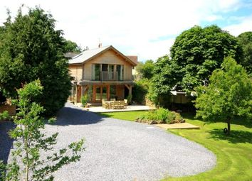 Thumbnail 7 bed detached house for sale in Broadhempston, Totnes, Devon