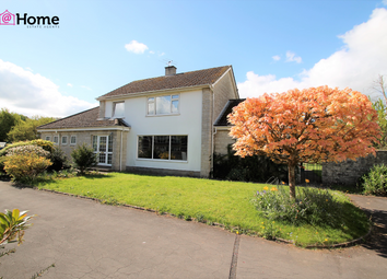 Thumbnail 4 bed detached house for sale in St Chads Green, Midsomer Norton
