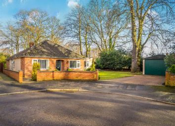 Thumbnail 3 bed detached bungalow for sale in Belmore Close, Thorpe St Andrew, Norwich