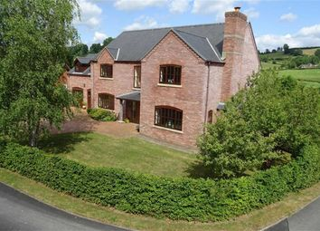 Thumbnail 5 bed detached house for sale in Dyfnant, 21, Parc Hafod, Tregynon, Newtown, Powys