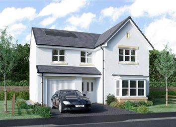 "Thumbnail 4 bed detached house for sale in ""Mackie"" at Clyde Avenue, Bothwell, Glasgow"