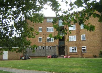 Thumbnail Studio to rent in Danbury Down, Basildon