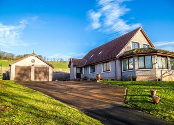 Thumbnail 5 bed detached house for sale in Houndwood, Eyemouth