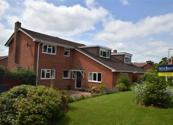 Thumbnail 4 bed detached house for sale in Stanley Walk, Exmouth, Devon